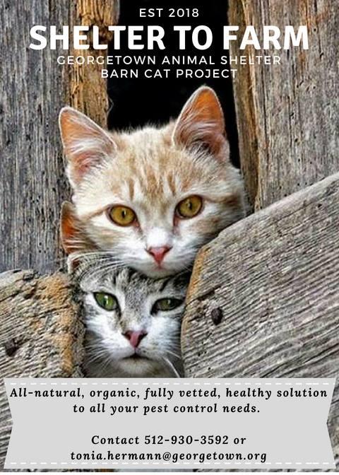 The Barn Cat Initiative