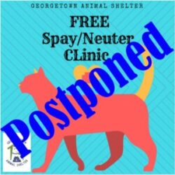 April Spay/Neuter Clinic Rescheduled to May